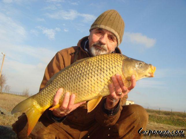 fishhungry купить киев
