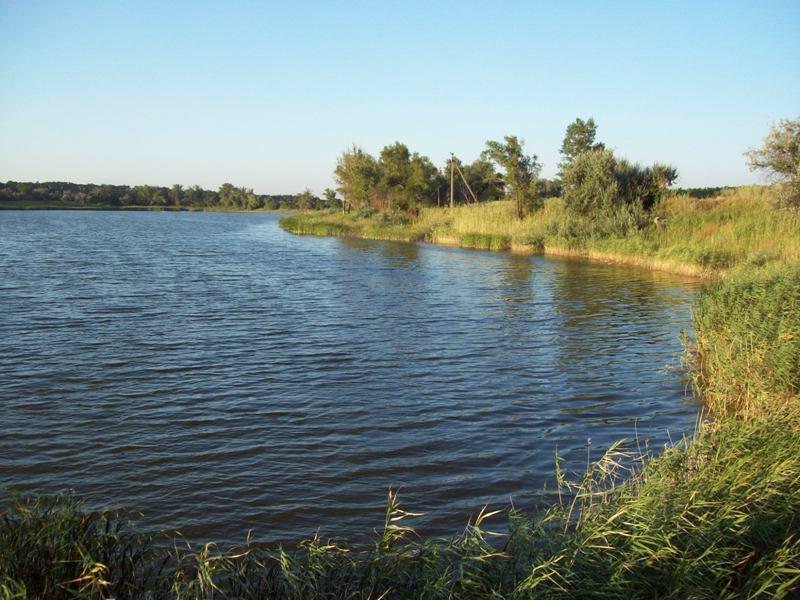 елизаровский пруд рыбалка